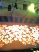 マンドラゴラ照明と舞台.jpg